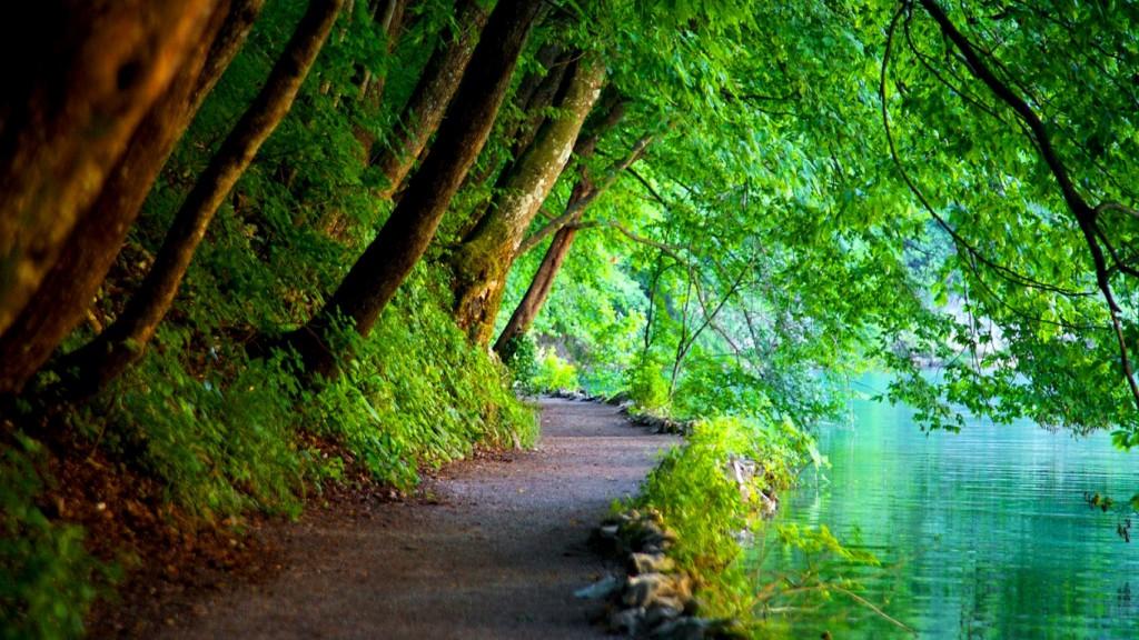 Promenera - ett enkelt sätt att komma igång med träningen