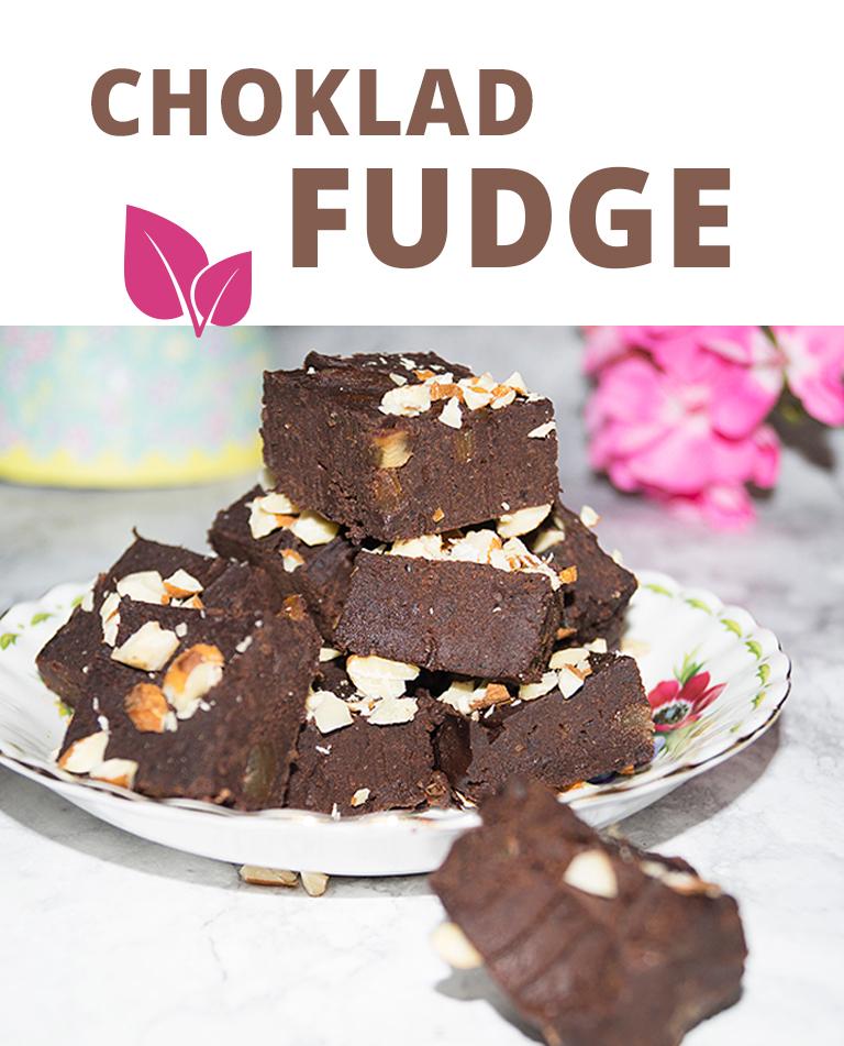 chokladfudge vegan glutenfri raw eatclean